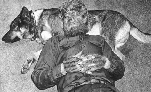 Apparently this dog named Moose, who played the wolf that bites Lawrence Talbot, totally became buddies with Lon Chaney Jr. on the set of The Wolf Man and followed him around wherever he went.