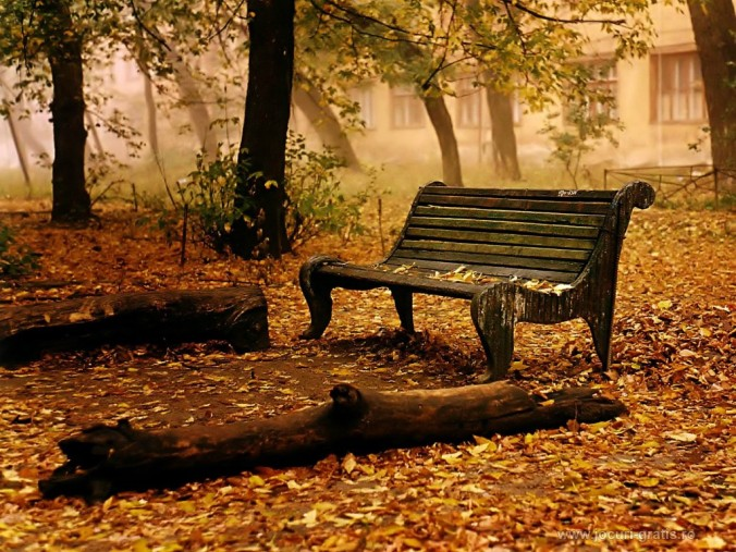 -autumn-fall