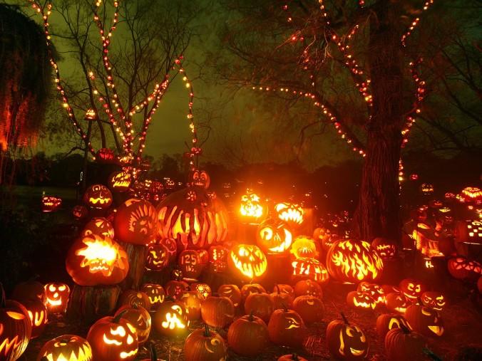 hallowee3