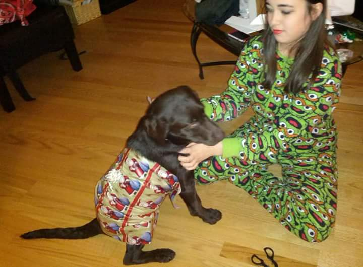 Hamish and Pualani- Hamish's first Christmas 2014