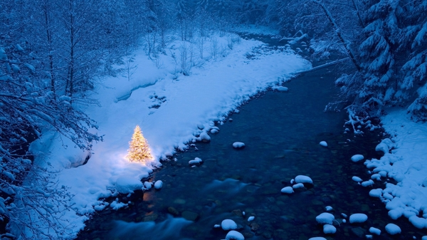 winter%20snow%20trees%20christmas%20trees%20rivers%201920x1080%20wallpaper_www_wall321_com_64